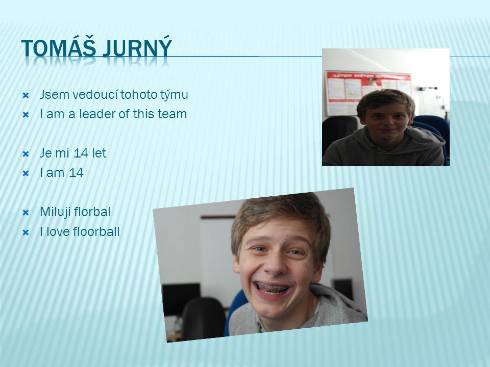  Jsem vedoucí tohoto týmu  I am a leader of this team  Je mi 14 let  I am 14  Rád lyžuji  I like skiing