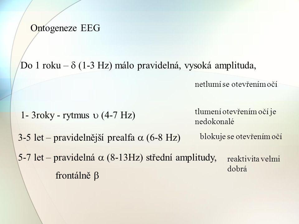 Ontogeneze EEG Do 1 roku –  (1-3 Hz) málo pravidelná, vysoká amplituda, 1- 3roky - rytmus  (4-7 Hz) 3-5 let – pravidelnější prealfa  (6-8 Hz) 5-7 l
