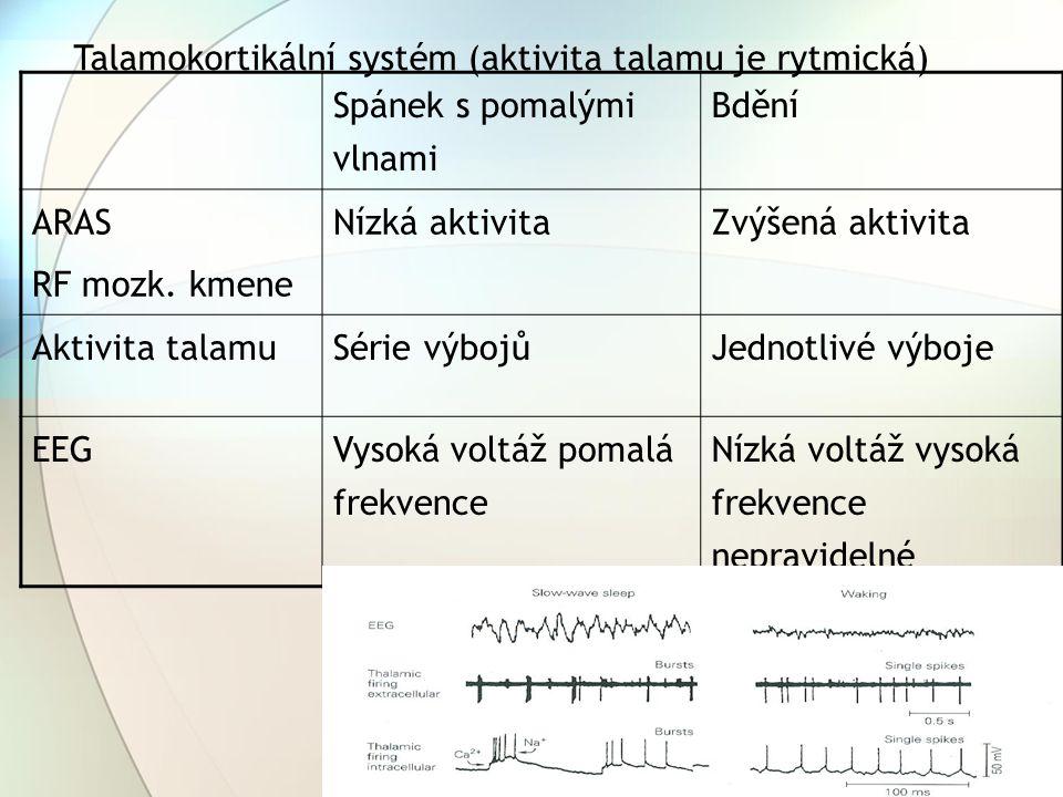 Talamokortikální systém (aktivita talamu je rytmická) Spánek s pomalými vlnami Bdění ARAS RF mozk. kmene Nízká aktivitaZvýšená aktivita Aktivita talam