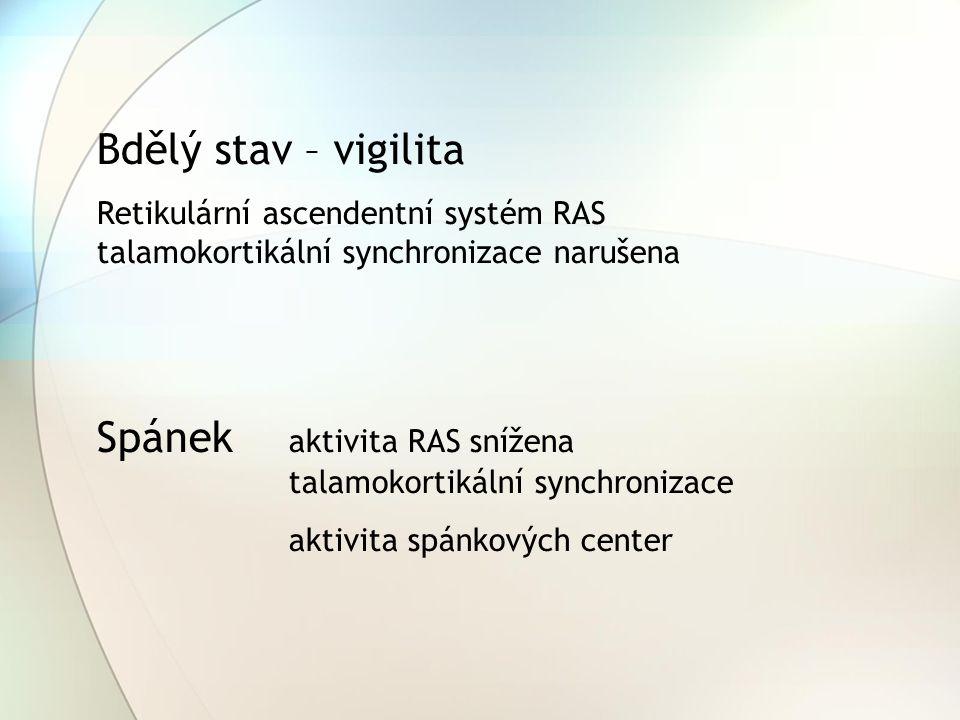 Bdělý stav – vigilita Retikulární ascendentní systém RAS talamokortikální synchronizace narušena Spánek aktivita RAS snížena talamokortikální synchron
