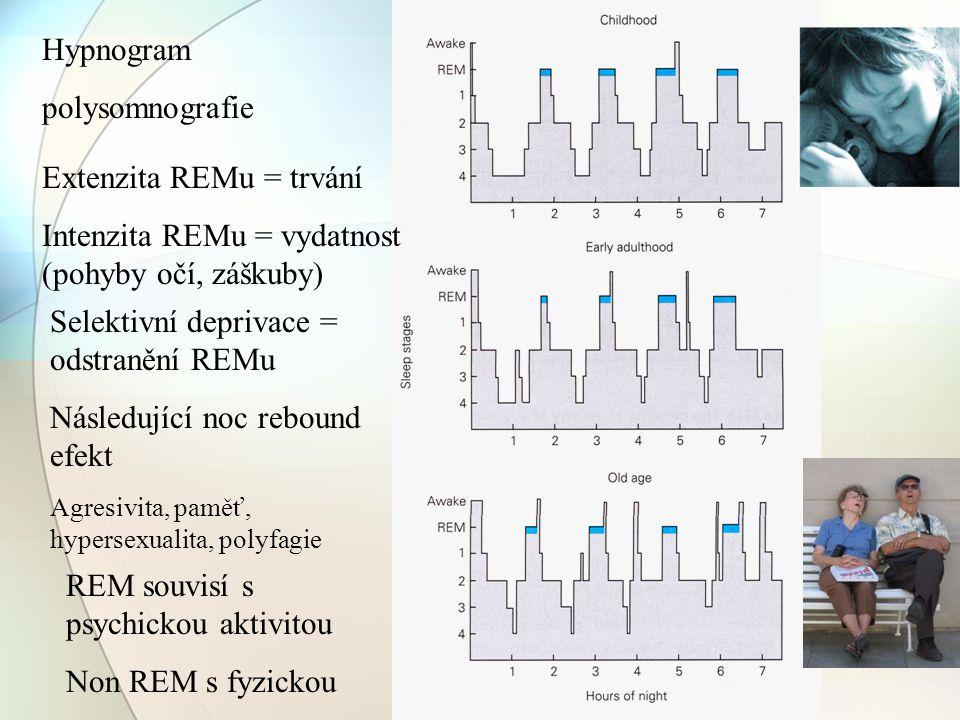 Hypnogram polysomnografie Extenzita REMu = trvání Intenzita REMu = vydatnost (pohyby očí, záškuby) Selektivní deprivace = odstranění REMu Následující
