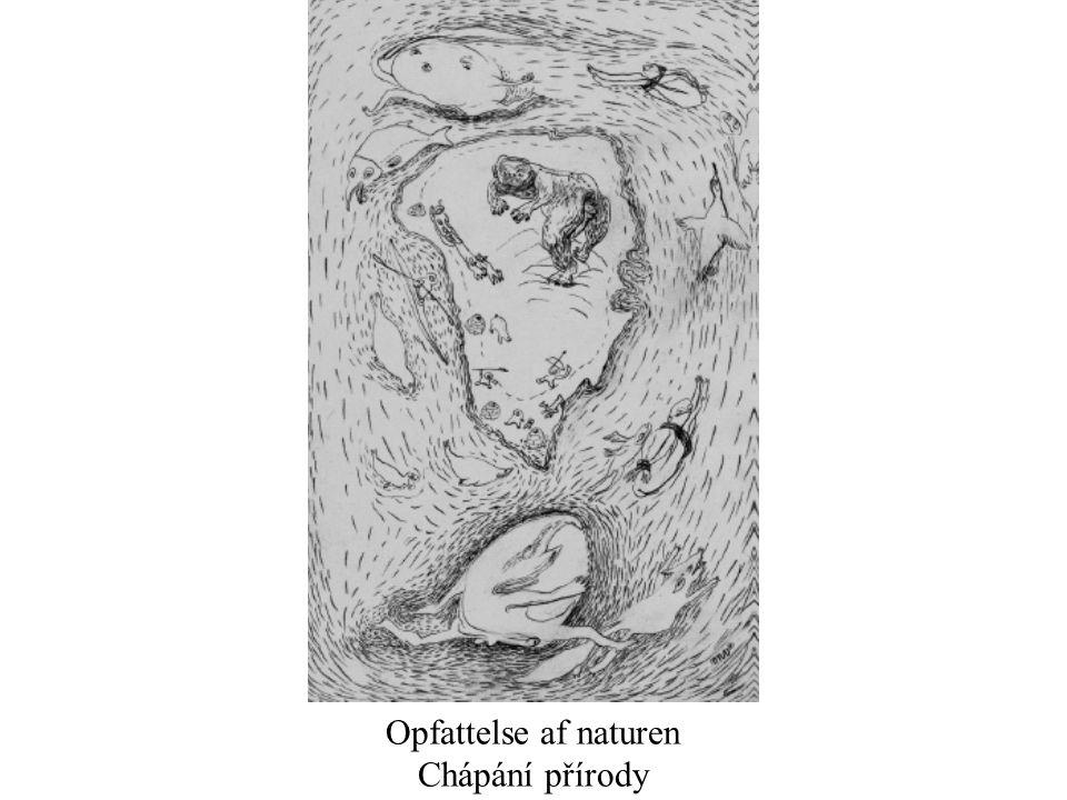 Opfattelse af naturen Chápání přírody