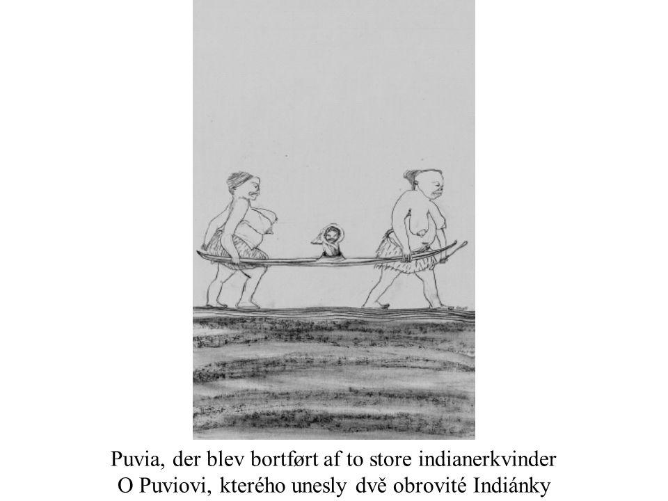 Puvia, der blev bortført af to store indianerkvinder O Puviovi, kterého unesly dvě obrovité Indiánky