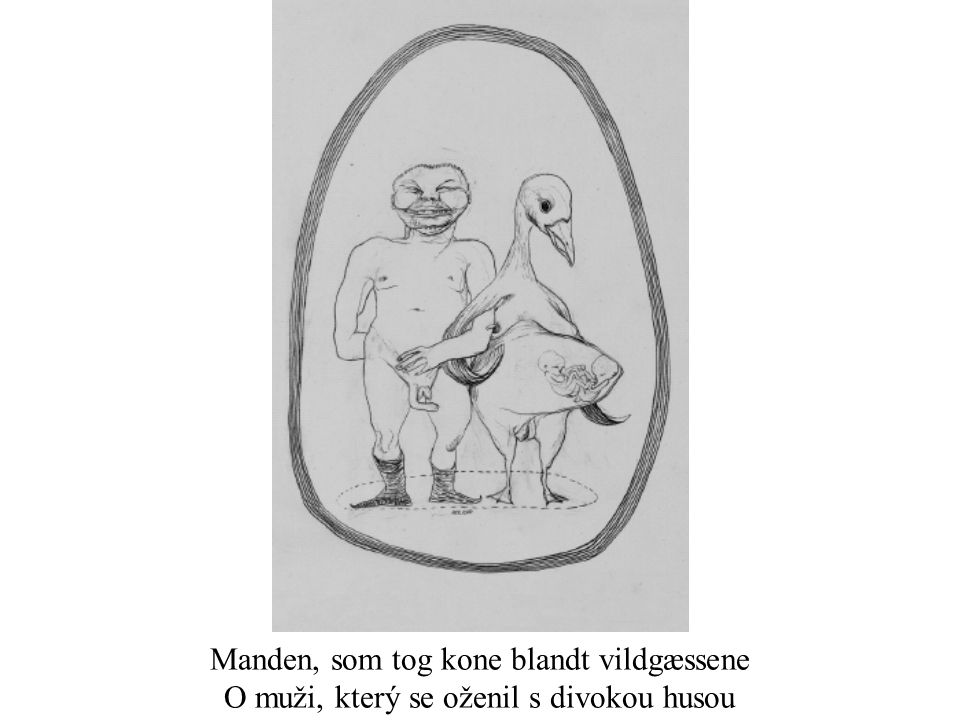 Manden, som tog kone blandt vildgæssene O muži, který se oženil s divokou husou