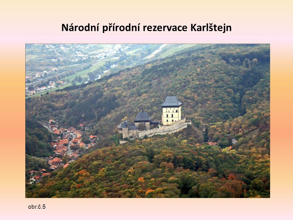 Národní přírodní rezervace Karlštejn obr.č.5