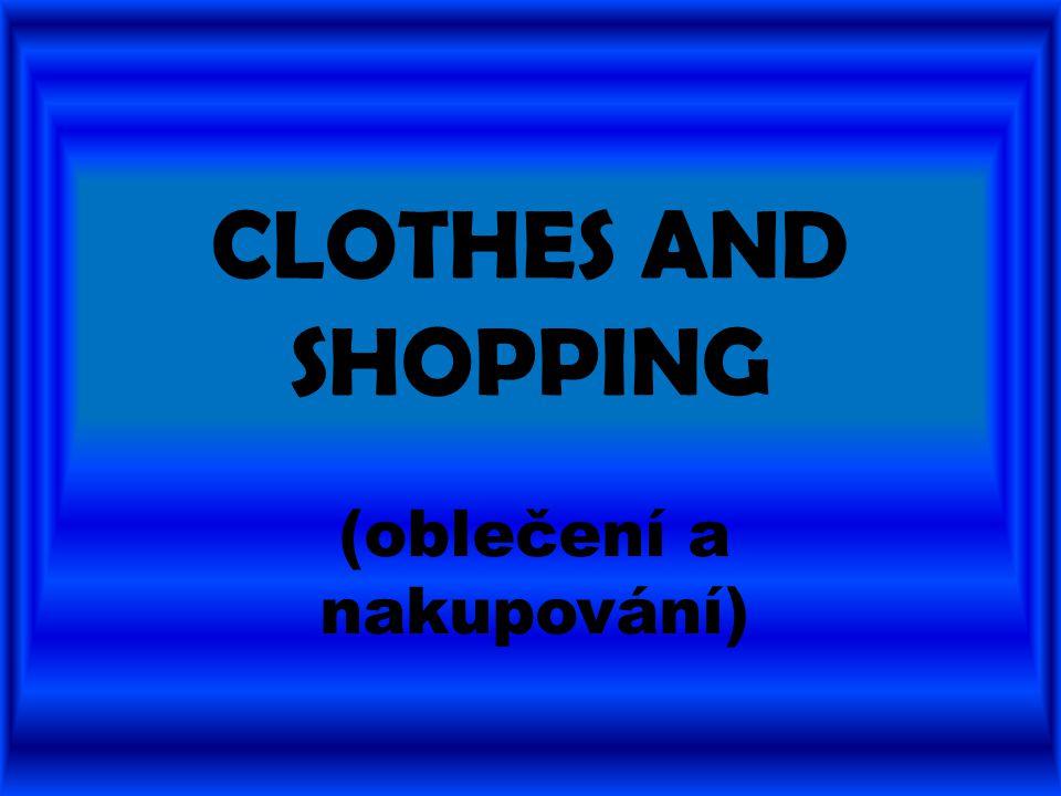 CLOTHES AND SHOPPING (oblečení a nakupování)
