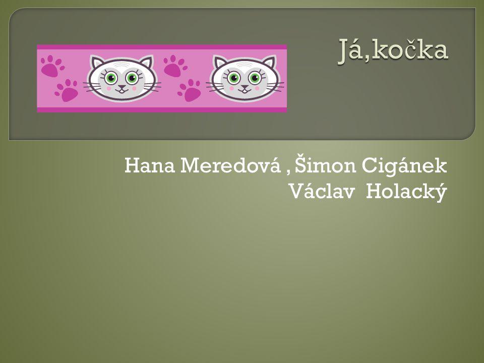 Hana Meredová, Šimon Cigánek Václav Holacký