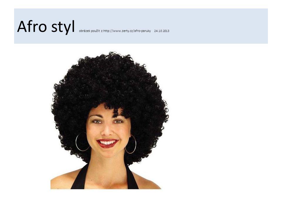 Afro styl obrázek použit z:http://www.zerty.cz/afro-paruky 24.10.2013