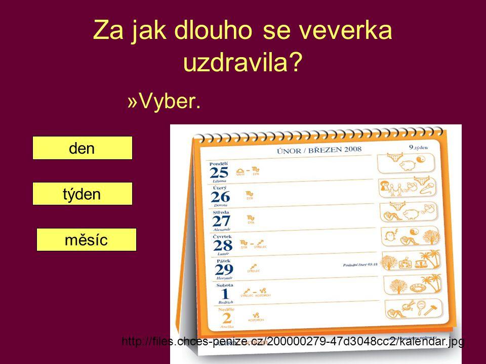 Za jak dlouho se veverka uzdravila? »Vyber. http://files.chces-penize.cz/200000279-47d3048cc2/kalendar.jpg den týden měsíc