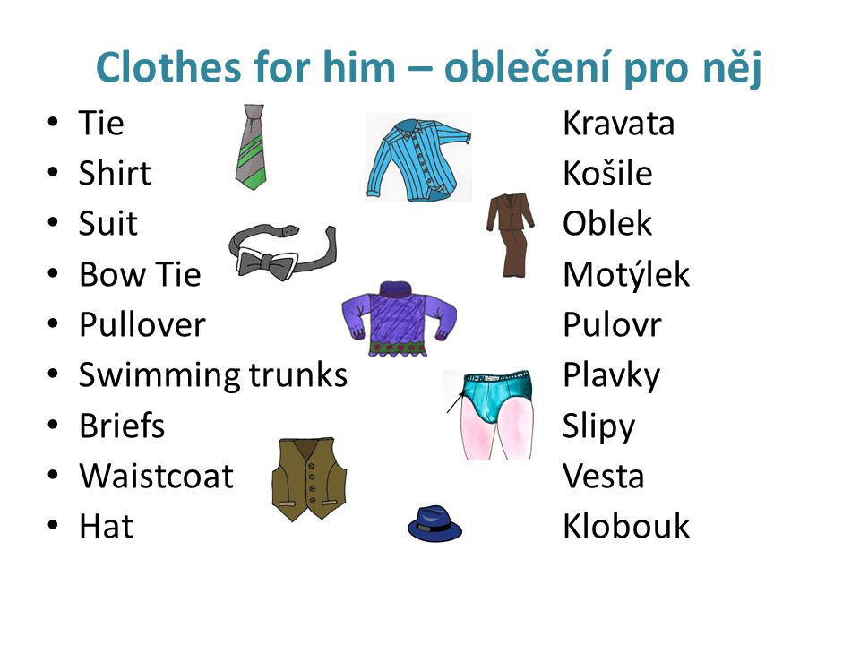 Clothes for him – oblečení pro něj TieKravata ShirtKošile SuitOblek Bow TieMotýlek PulloverPulovr Swimming trunksPlavky BriefsSlipy WaistcoatVesta Hat