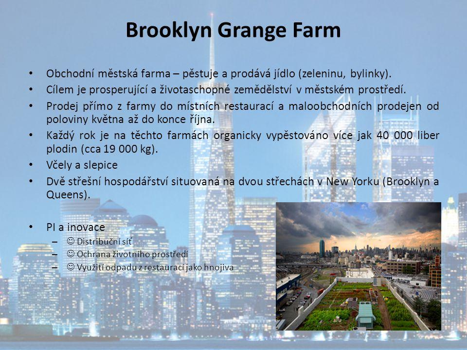 Brooklyn Grange Farm Obchodní městská farma – pěstuje a prodává jídlo (zeleninu, bylinky). Cílem je prosperující a životaschopné zemědělství v městské