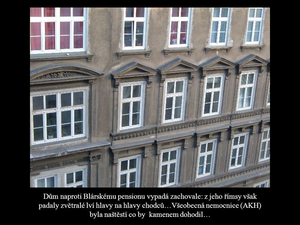 A též by napsal veselohru o primě B, která celou výpravu do Vídně prochodila a prostála na jehlových podpatcích.