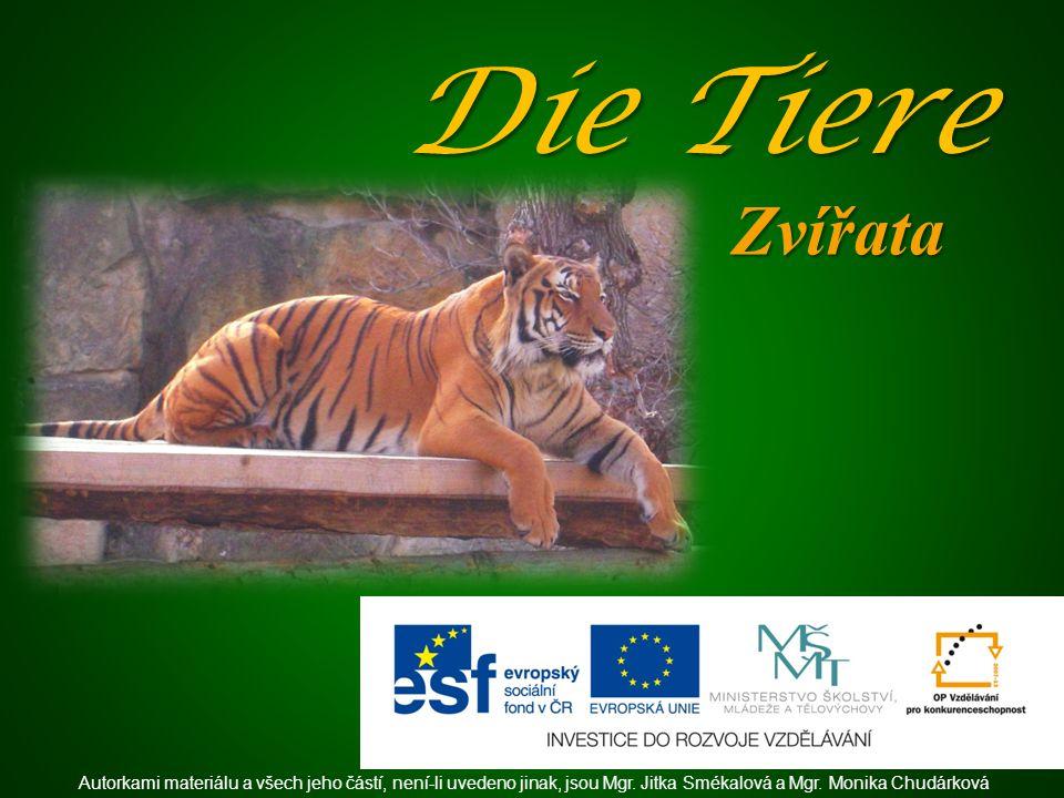 Die Tiere Zvířata Autorkami materiálu a všech jeho částí, není-li uvedeno jinak, jsou Mgr.