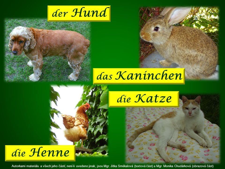 die Henne die Katze der Hund das Kaninchen Autorkami materiálu a všech jeho částí, není-li uvedeno jinak, jsou Mgr.