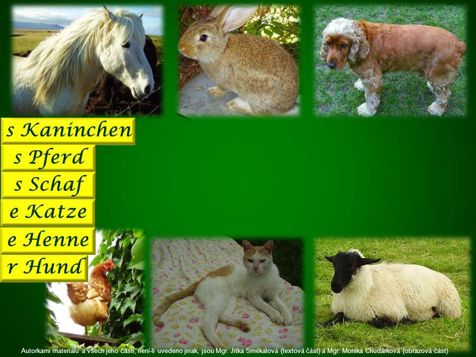 s Kaninchen s Pferd s Schaf e Katze r Hund e Henne Autorkami materiálu a všech jeho částí, není-li uvedeno jinak, jsou Mgr.