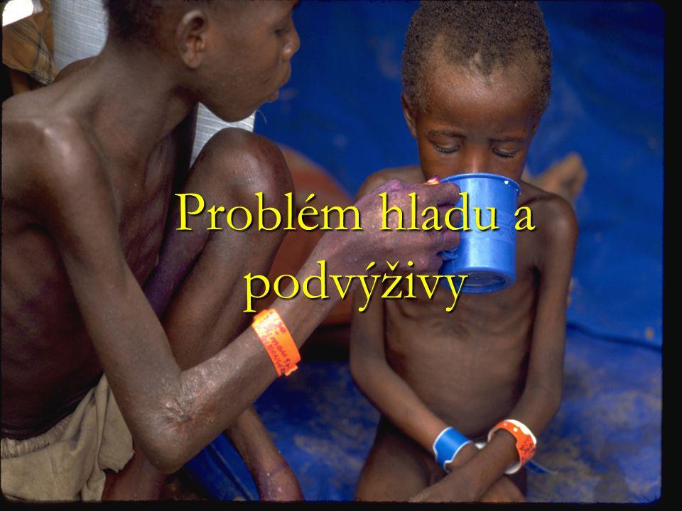 Problém hladu a podvýživy