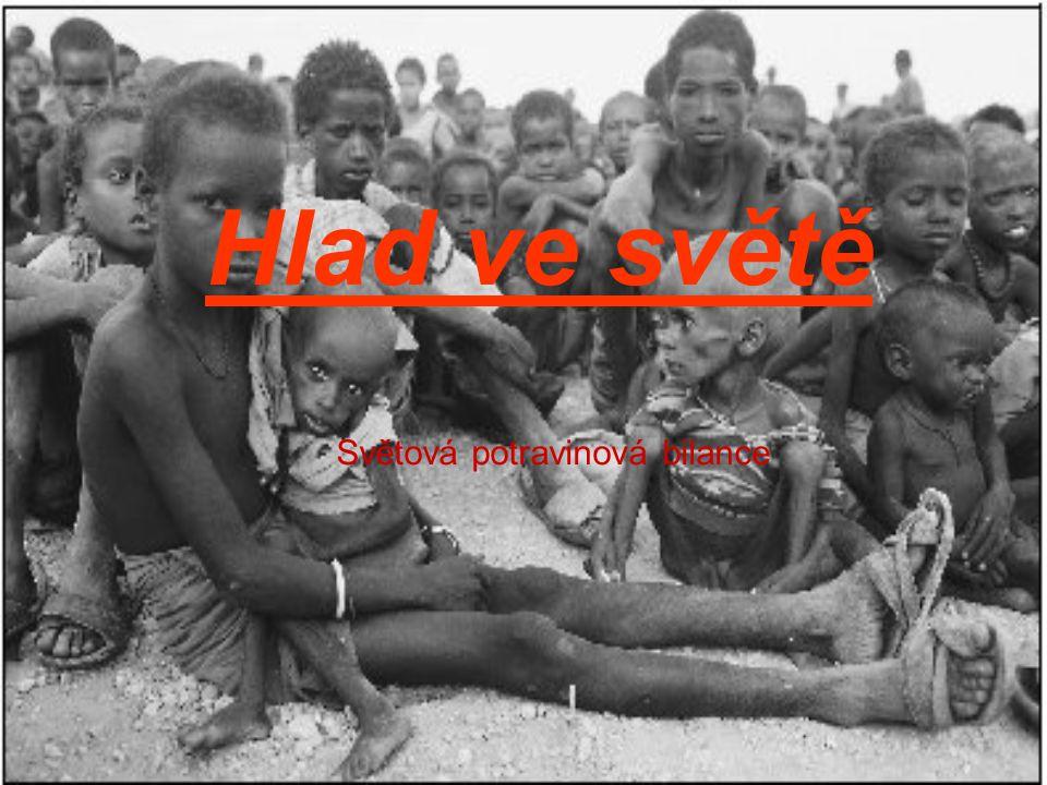 Hlad ve světě Světová potravinová bilance