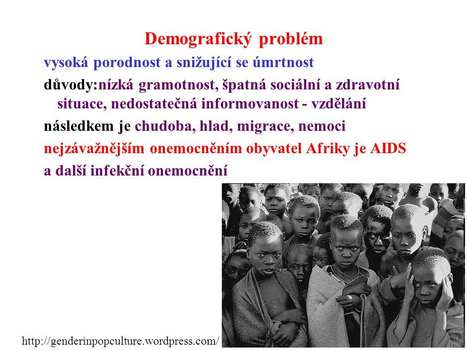 Demografický problém vysoká porodnost a snižující se úmrtnost důvody:nízká gramotnost, špatná sociální a zdravotní situace, nedostatečná informovanost - vzdělání následkem je chudoba, hlad, migrace, nemoci nejzávažnějším onemocněním obyvatel Afriky je AIDS a další infekční onemocnění http://genderinpopculture.wordpress.com/