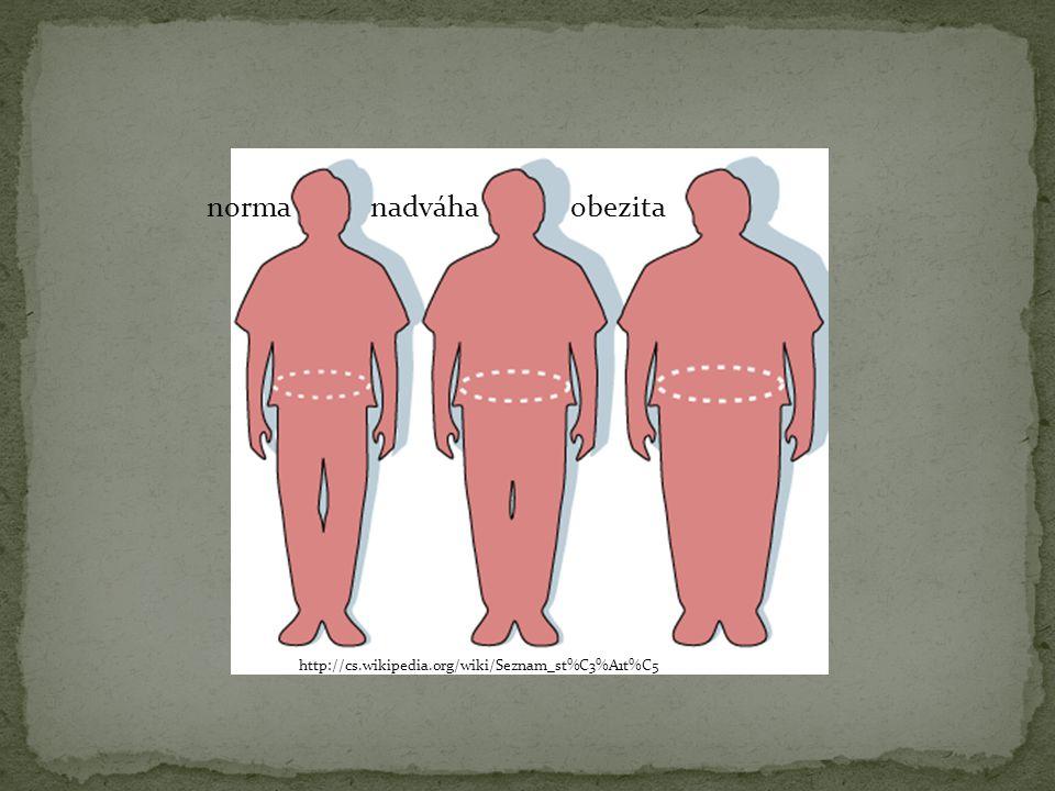 Nadměrný příjem potravy; nadměrný příjem kalorií Deprese Nedostatek pohybu Nepravidelné stravování Podzimní přibírání váhy Mateřské přibírání váhy Hypofunkce štítné žlázy Nadbytek estrogenů http://cs.wikipedia.org/wiki/Obezita