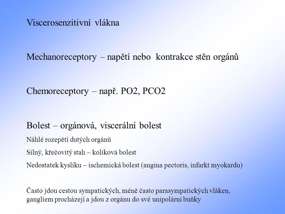 Viscerosenzitivní vlákna Mechanoreceptory – napětí nebo kontrakce stěn orgánů Chemoreceptory – např. PO2, PCO2 Bolest – orgánová, viscerální bolest Ná