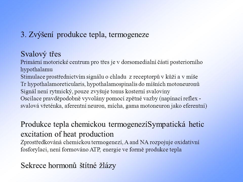 3. Zvýšení produkce tepla, termogeneze Svalový třes Primární motorické centrum pro třes je v dorsomedialní části posteriorního hypothalamu Stimulace p
