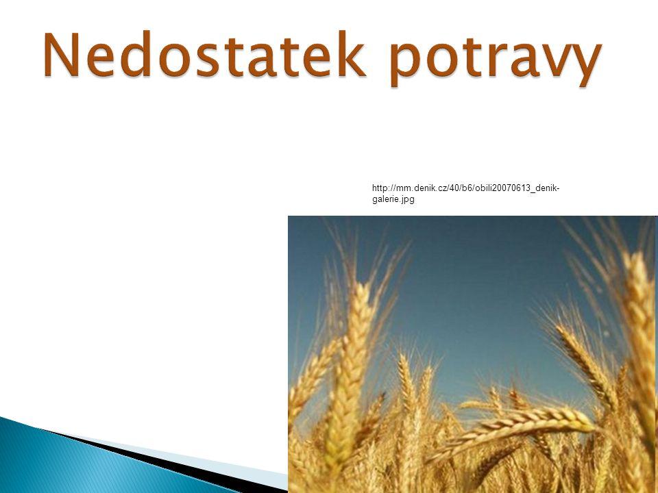 http://mm.denik.cz/40/b6/obili20070613_denik- galerie.jpg