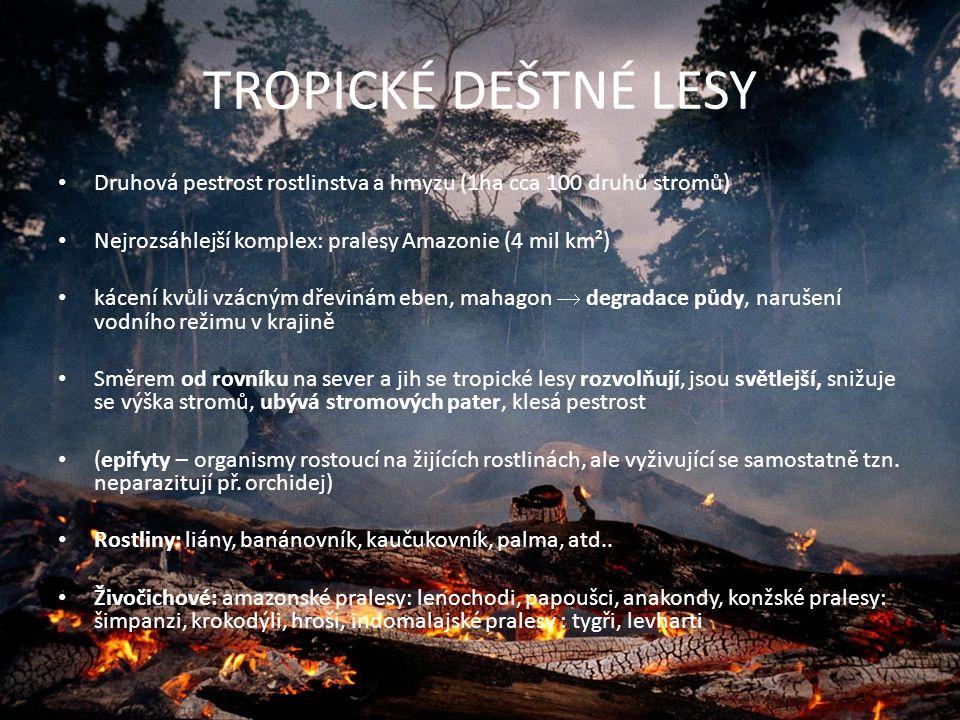 Bioklimatické výškové stupně Přírodní podmínky se mění podle nadmořské výšky Vegetační stupeň – základní jednotka používaná vy fytogeografii, vyjadřuje výškovou pásmovitost Celkem jich je 8 (Biota – výškové vegetační stupně ve střední Evropě) Nížinný stupeň – do 200 m, dubové lesy Pahorkatinový – do 500 m, kulturně využívaná oblast Podhorský – do 800 m, buky, jedle Horský – do 1200 m, smrky Subalpinský – do 1900 m, kosodřeviny, jalovce Alpinský – do 2200 m, travnaté a bylinné porosty Subnivální – do 2500 m, skály bez vegetace Nivální – nad 2500 m, stupeň věčného sněhu a ledu