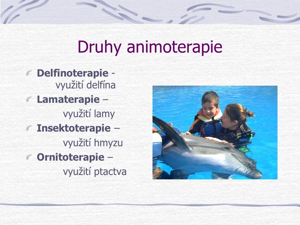 Druhy animoterapie Delfinoterapie - využití delfína Lamaterapie – využití lamy Insektoterapie – využití hmyzu Ornitoterapie – využití ptactva