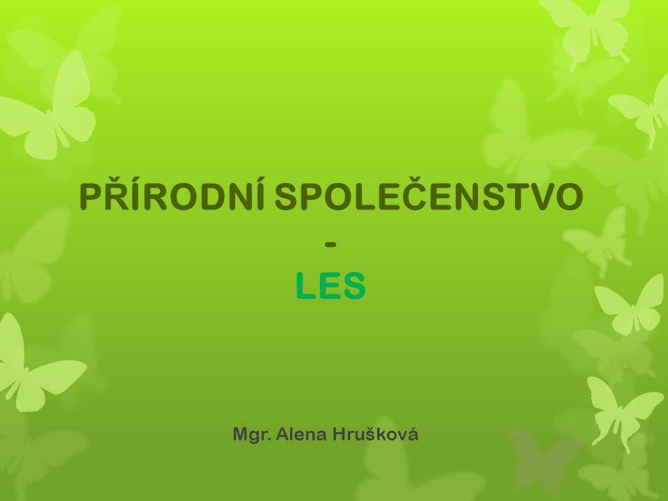 P Ř ÍRODNÍ SPOLE Č ENSTVO - LES Mgr. Alena Hrušková