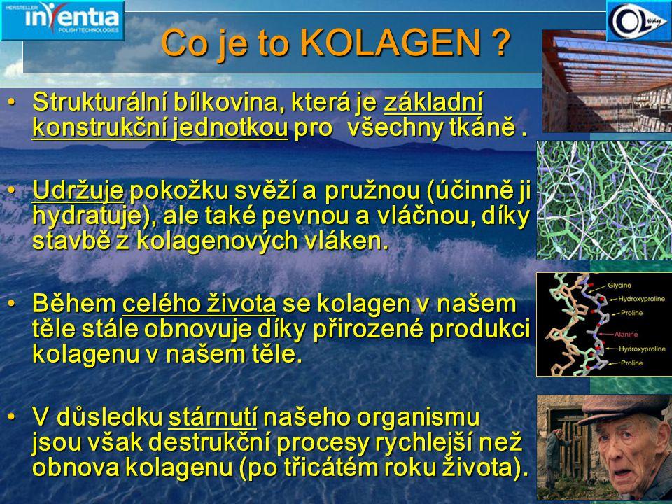13 Účinek přírodního kolagenu Unikátní stabilita 5-28 ° C Používáním přírodního kolagenu značky COLWAY můžeme: Používáním přírodního kolagenu značky COLWAY můžeme: Zpomalit biologické stárnutí pokožkyZpomalit biologické stárnutí pokožky Vrátit čas v procesu stárnutíVrátit čas v procesu stárnutí