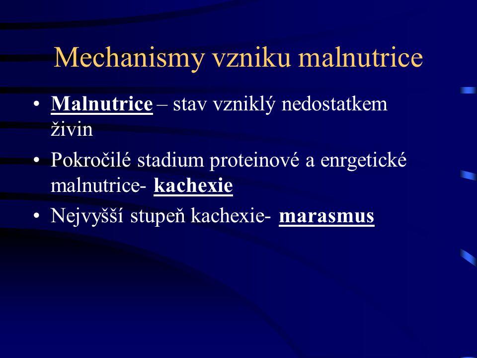 Mechanismy vzniku malnutrice Malnutrice – stav vzniklý nedostatkem živin Pokročilé stadium proteinové a enrgetické malnutrice- kachexie Nejvyšší stupe