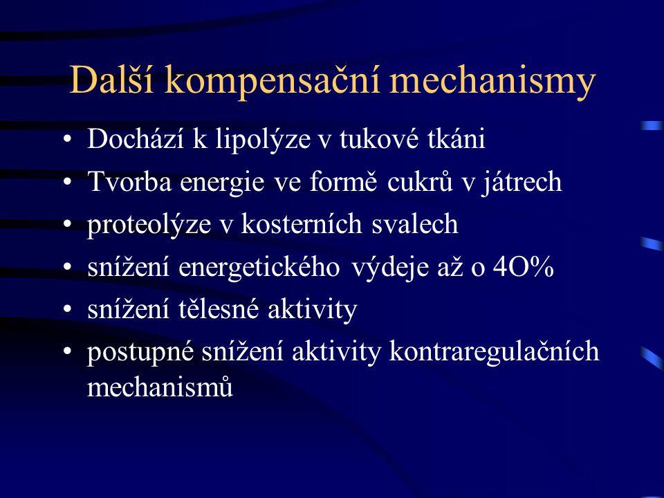 Další kompensační mechanismy Dochází k lipolýze v tukové tkáni Tvorba energie ve formě cukrů v játrech proteolýze v kosterních svalech snížení energet