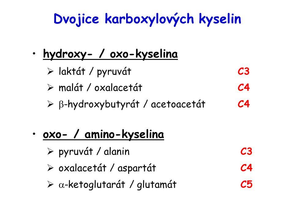 Dvojice karboxylových kyselin hydroxy- / oxo-kyselina  laktát / pyruvátC3  malát / oxalacetát C4   -hydroxybutyrát / acetoacetátC4 oxo- / amino-ky