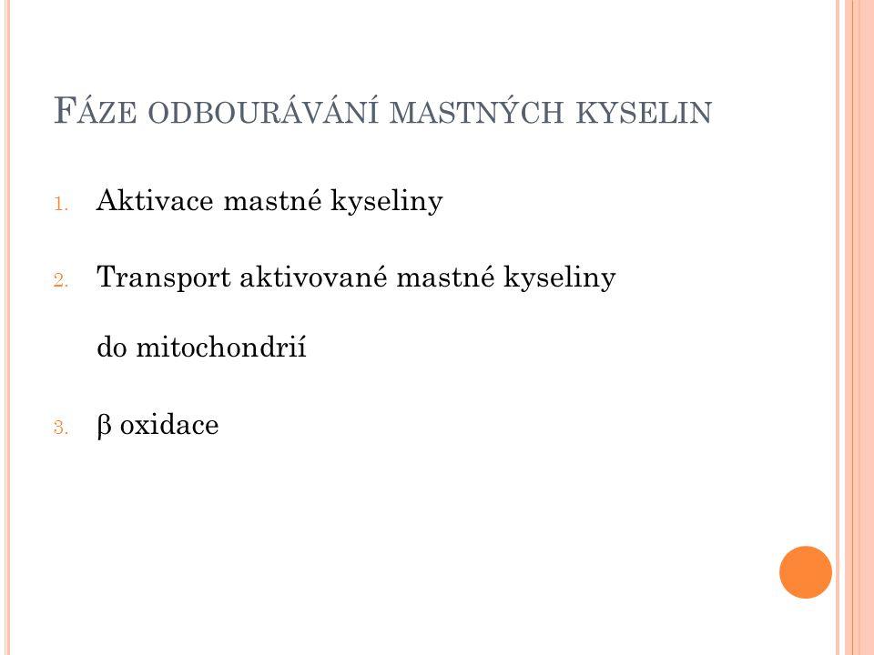 A KTIVACE MK POMOCÍ KOENZYMU A MK + CoA + ATP  acylCoA + AMP Obr. 1: Koenzym A