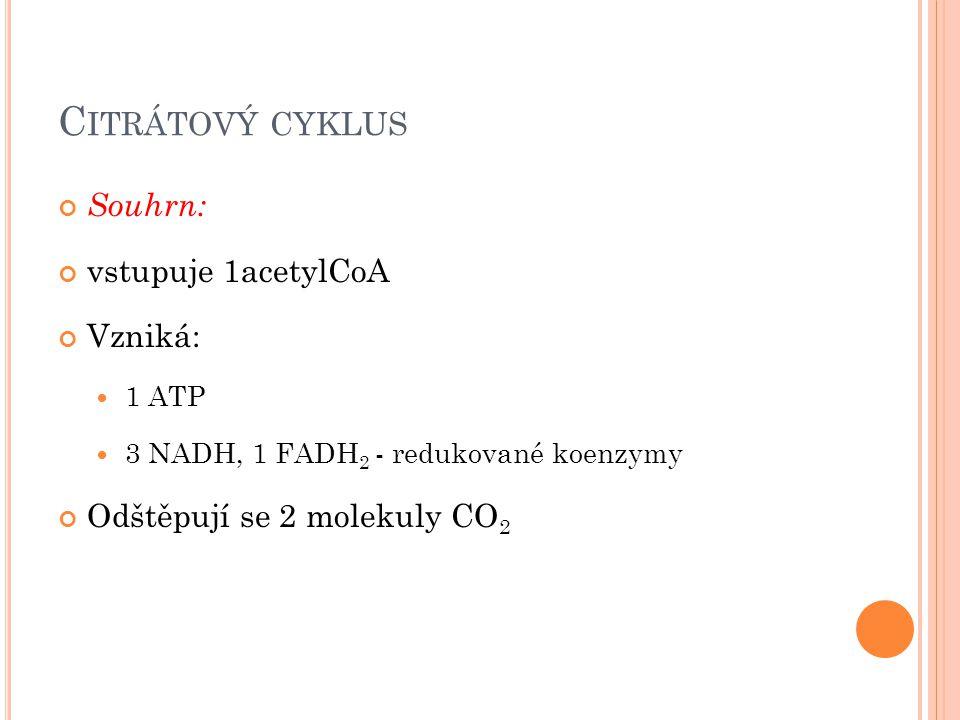 C ITRÁTOVÝ CYKLUS Souhrn: vstupuje 1acetylCoA Vzniká: 1 ATP 3 NADH, 1 FADH 2 - redukované koenzymy Odštěpují se 2 molekuly CO 2
