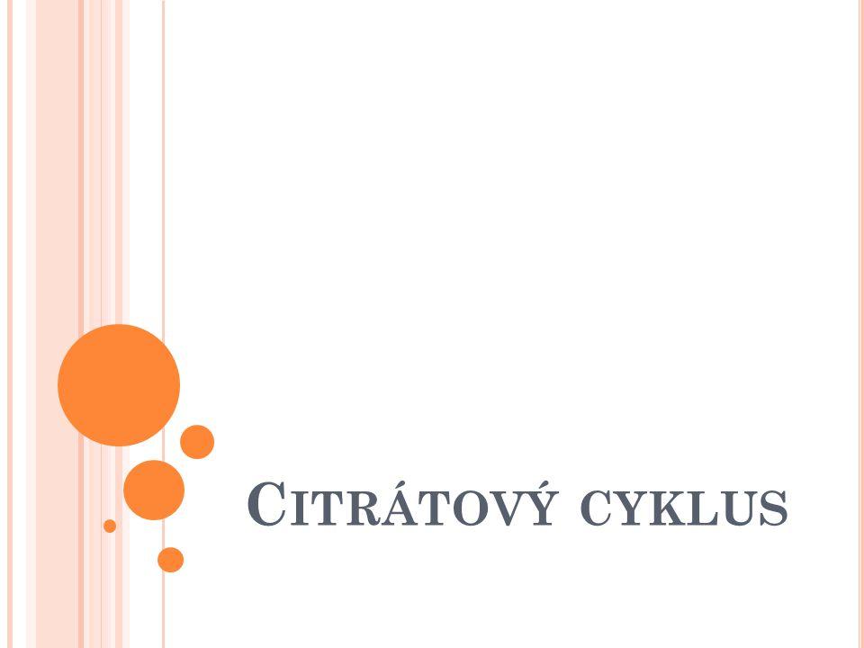 Krebsův cyklus Cyklus kyseliny citrónové TCA cyklus (cyklus trikarboxylových kyselin) Vstupuje do něj acetylCoA, který vzniká : 1.