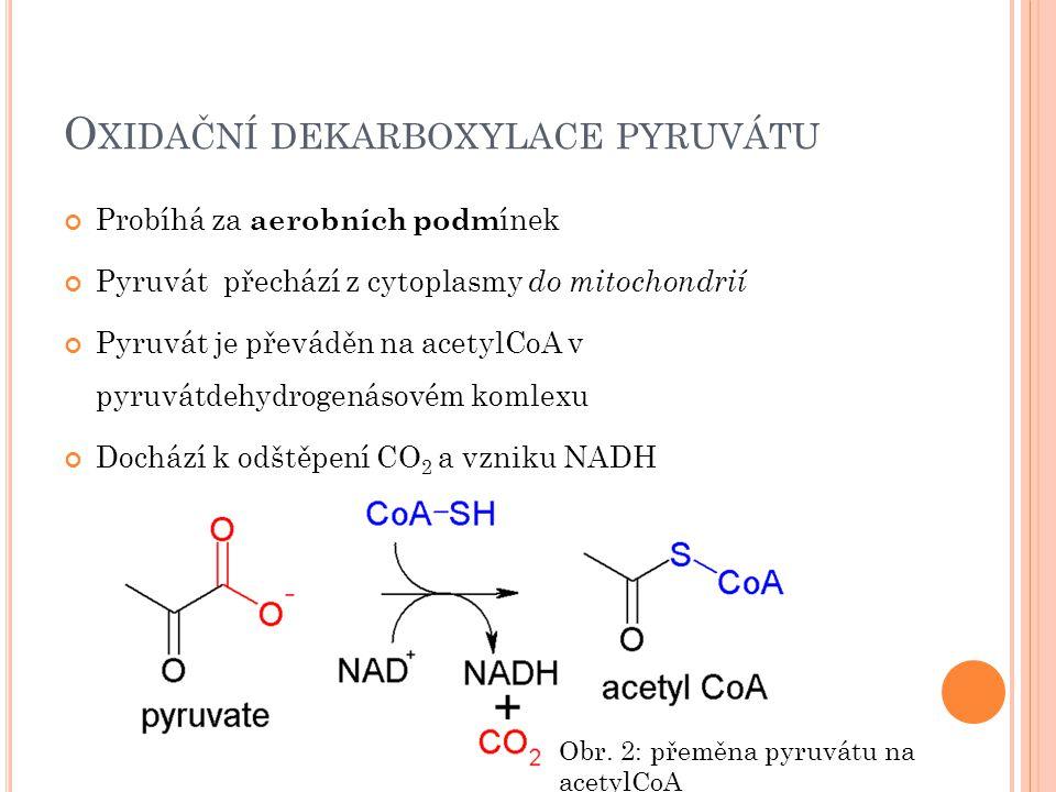 O XIDAČNÍ DEKARBOXYLACE PYRUVÁTU Probíhá za aerobních podm ínek Pyruvát přechází z cytoplasmy do mitochondrií Pyruvát je převáděn na acetylCoA v pyruvátdehydrogenásovém komlexu Dochází k odštěpení CO 2 a vzniku NADH Obr.