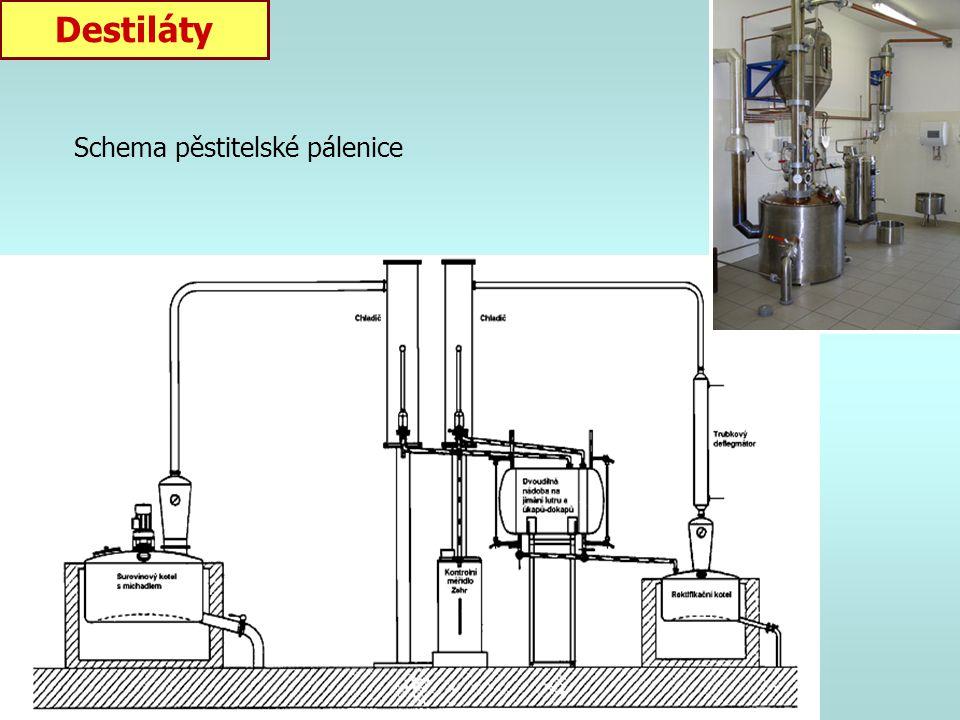 Výroba destilátů Příprava kvasu: - pouze vyzrálé, zdravé a čisté ovoce - odtranění stopek a zbytku listů - rozmáčknutí u tužšího ovoce (peckoviny) x p