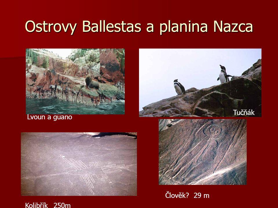 Jezero Umayo, pohřebiště Sillustani, tráva ICHA a zavodňovací rýhy 30 km severozáp.od Puna Altiplano…3915 m.n.m ICHA Chullpas - až 5000 let