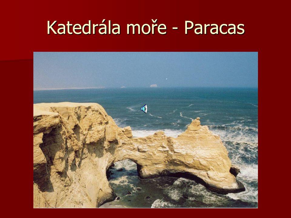 Kondor v zajetí se loučí …… Pepe letiště Nazca El Candelabros - 128 m - Paracas Tukan-prales Madre de Dios