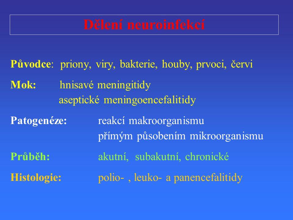 D ě lení neuroinfekcí P ů vodce: priony, viry, bakterie, houby, prvoci, č ervi Mok: hnisavé meningitidy aseptické meningoencefalitidy Patogenéze: reak