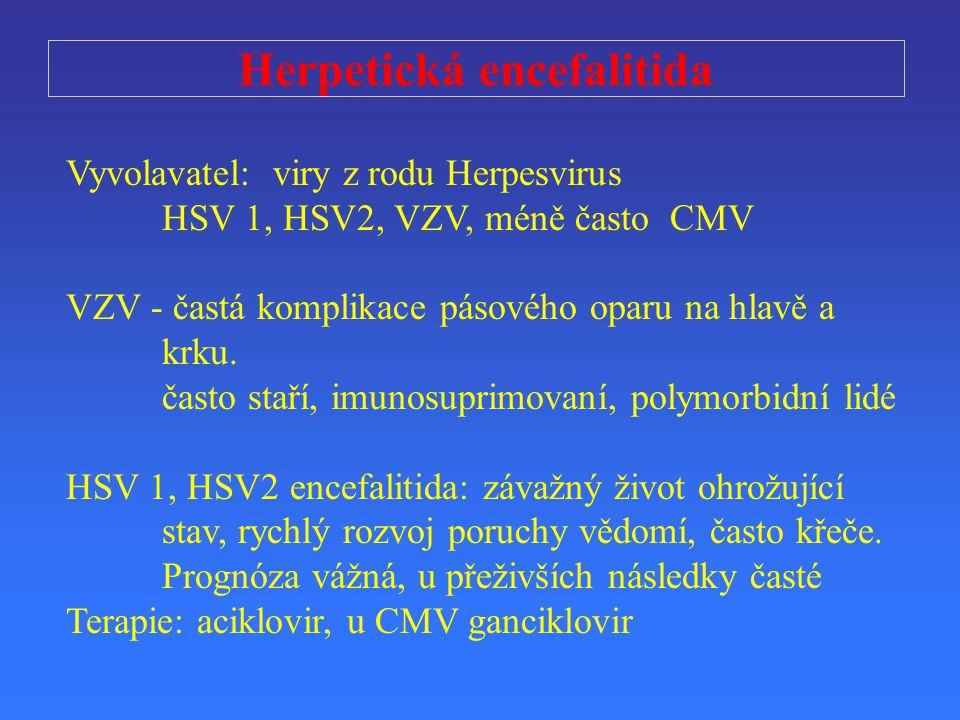 Herpetická encefalitida Vyvolavatel: viry z rodu Herpesvirus HSV 1, HSV2, VZV, méně často CMV VZV - častá komplikace pásového oparu na hlavě a krku. č