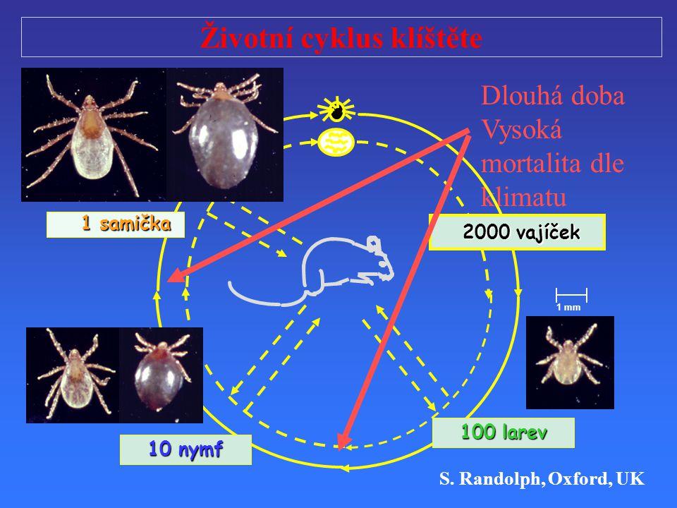 Životní cyklus klíštěte Dlouhá doba Vysoká mortalita dle klimatu 2000 vajíček 2000 vajíček 10 nymf 100 larev 1 samička 1 samička 1 mm S. Randolph, Oxf