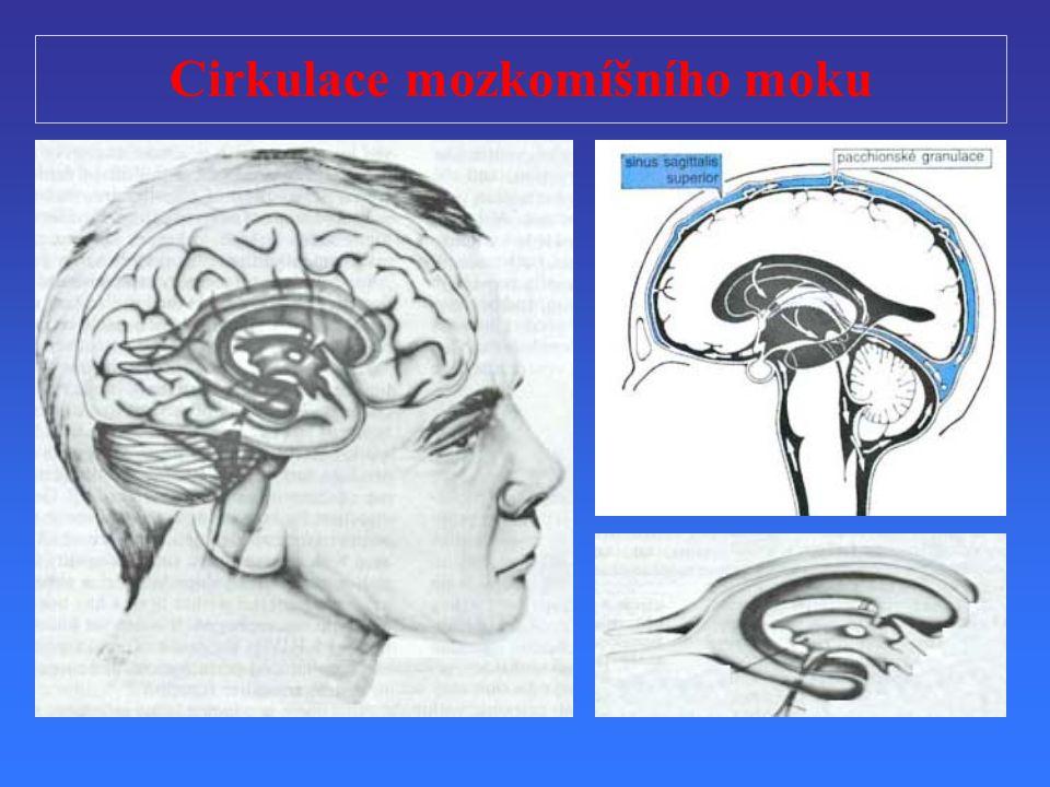 Cirkulace mozkomíšního moku
