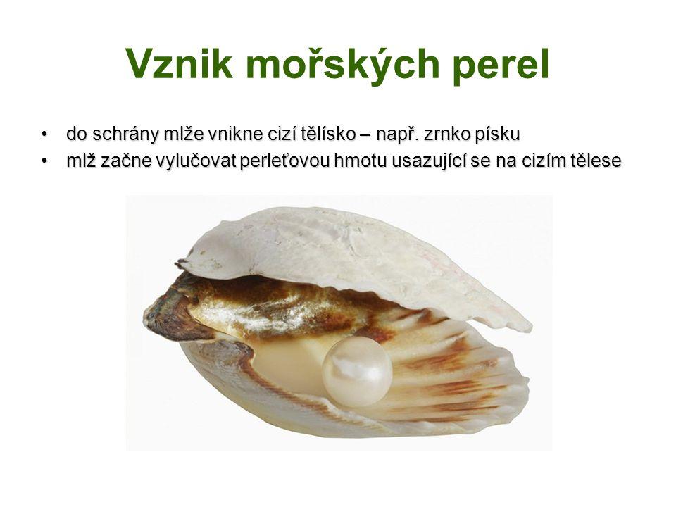 Vznik mořských perel do schrány mlže vnikne cizí tělísko – např. zrnko pískudo schrány mlže vnikne cizí tělísko – např. zrnko písku mlž začne vylučova