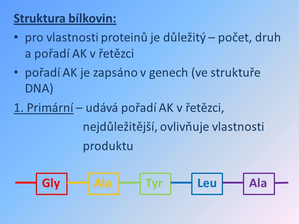Struktura bílkovin: pro vlastnosti proteinů je důležitý – počet, druh a pořadí AK v řetězci pořadí AK je zapsáno v genech (ve struktuře DNA) 1. Primár