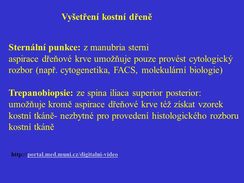 Vyšetření kostní dřeně Sternální punkce: z manubria sterni aspirace dřeňové krve umožňuje pouze provést cytologický rozbor (např. cytogenetika, FACS,