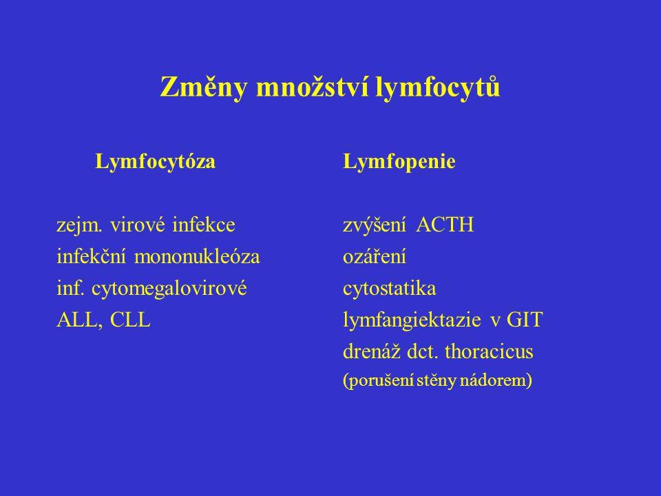 Změny množství lymfocytů Lymfocytóza zejm. virové infekce infekční mononukleóza inf. cytomegalovirové ALL, CLL Lymfopenie zvýšení ACTH ozáření cytosta