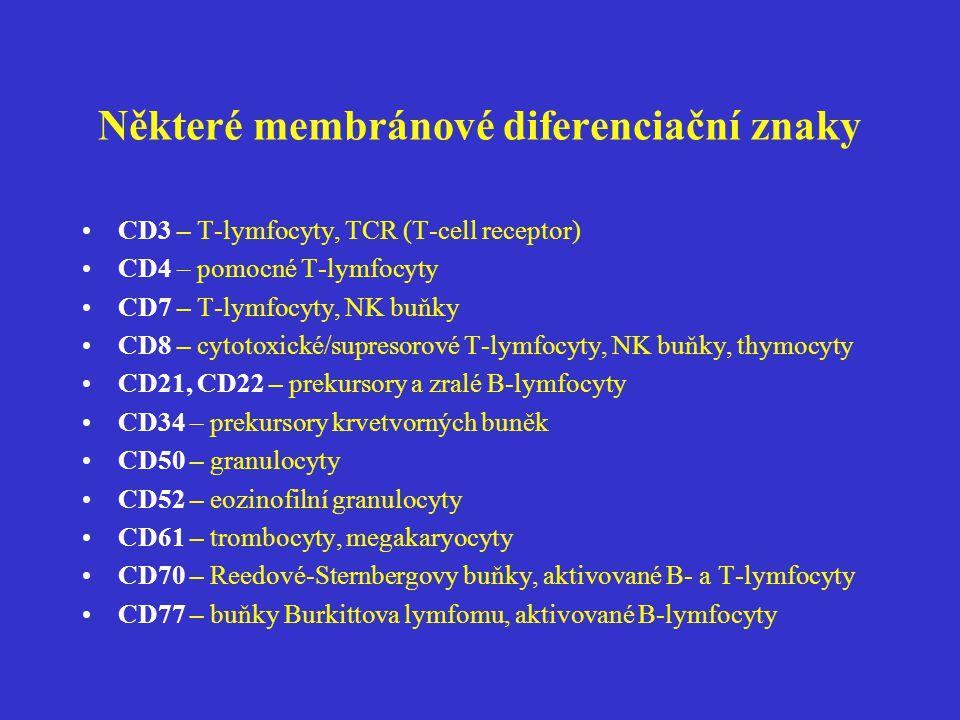 Některé membránové diferenciační znaky CD3 – T-lymfocyty, TCR (T-cell receptor) CD4 – pomocné T-lymfocyty CD7 – T-lymfocyty, NK buňky CD8 – cytotoxick