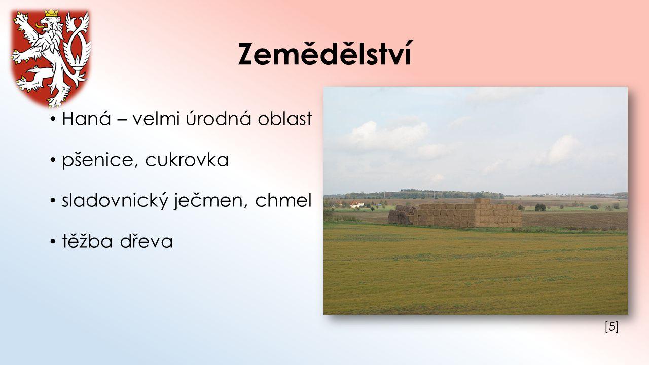 Zemědělství Haná – velmi úrodná oblast pšenice, cukrovka sladovnický ječmen, chmel těžba dřeva [5][5]